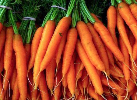 Il colore orange delle carote